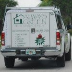 Always Green Pest Management
