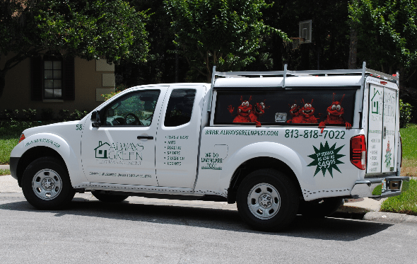 Always Green Pest Control truck provides Tampa pest control to solve your pest problem